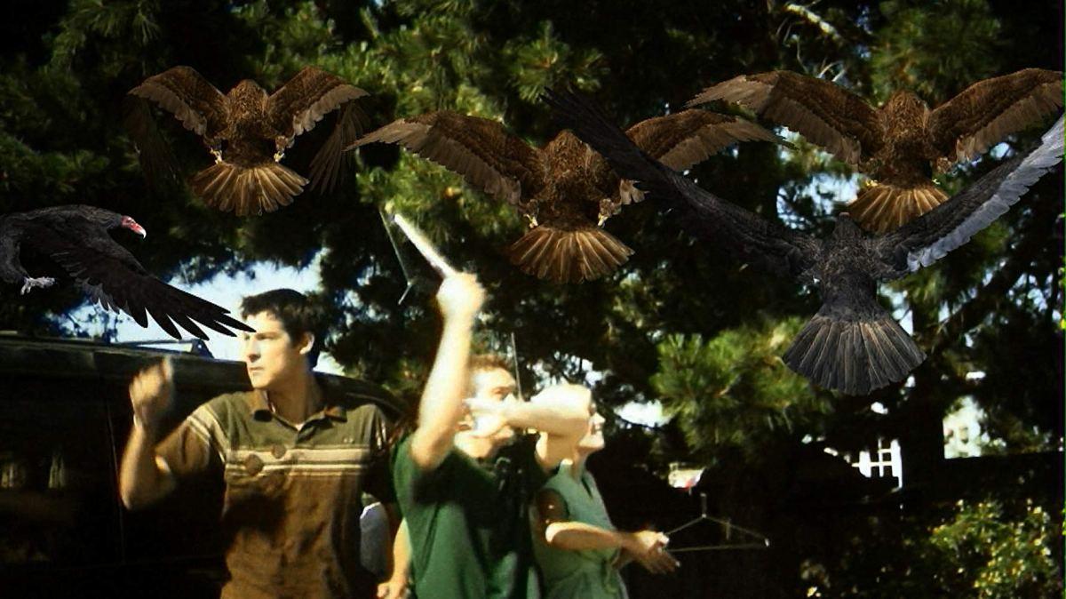 Birdemic: Shock and Terror(2010)