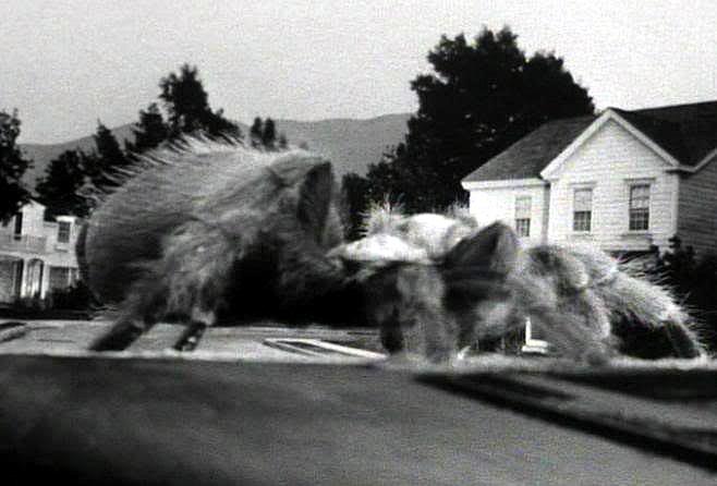 Earth vs the Spider(1958)