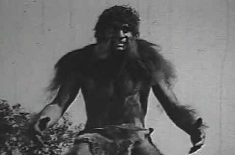 King of the Wild(1931)